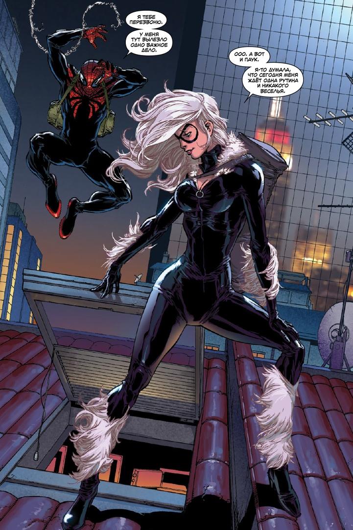 black cat spiderman - 651×1024